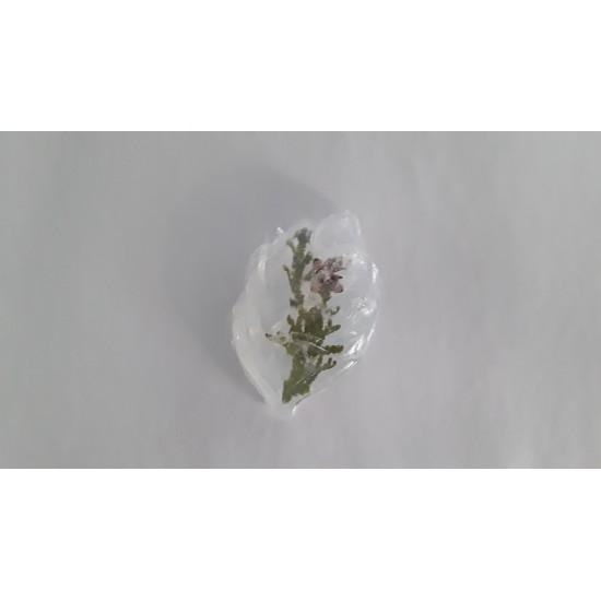 savon à la glycerine (cèdre)